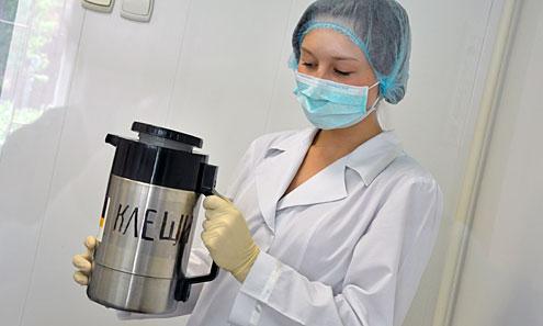 Ульяна Ворожцова учится в Ревдинском медколледже и проходит практику в серологической лаборатории. Она регулярно прививается от энцефалита: потому что подцепить клеща можно даже дома — от домашнего животного