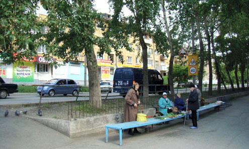 На мини-рынке бабушки старались не садиться под опасный тополь (крайний слева)