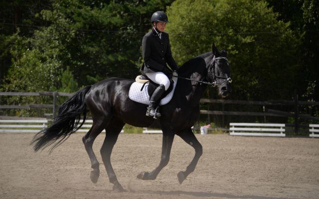Руководитель КСК «Кунгурка» Юлия Красулина на лошади рысистой помеси по имени Белла.