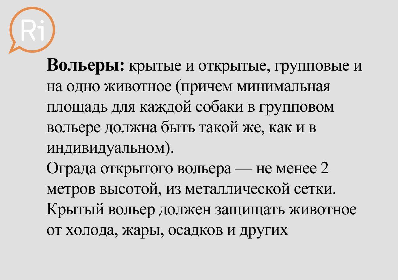 priut_slaid (12)