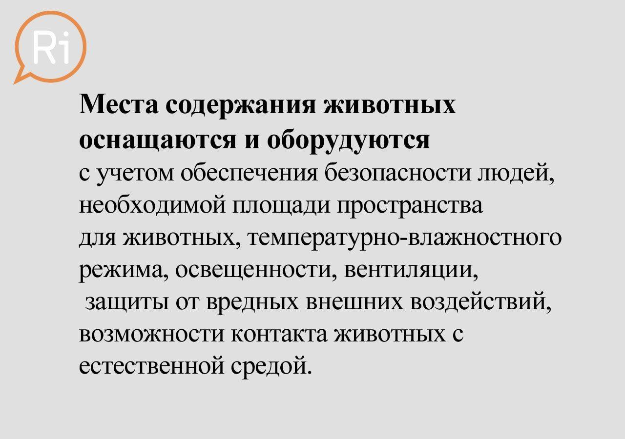 priut_slaid (14)