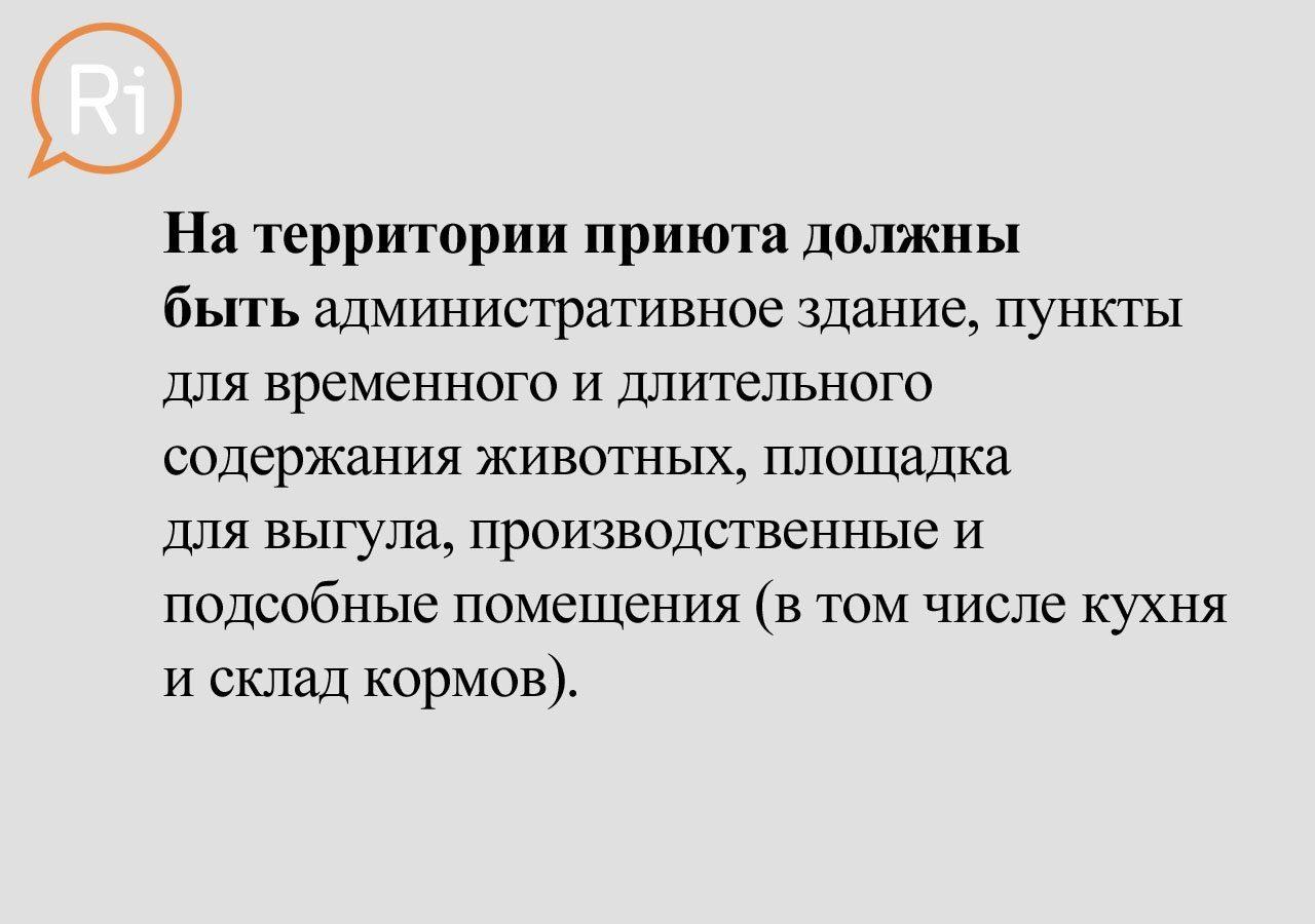 priut_slaid (4)