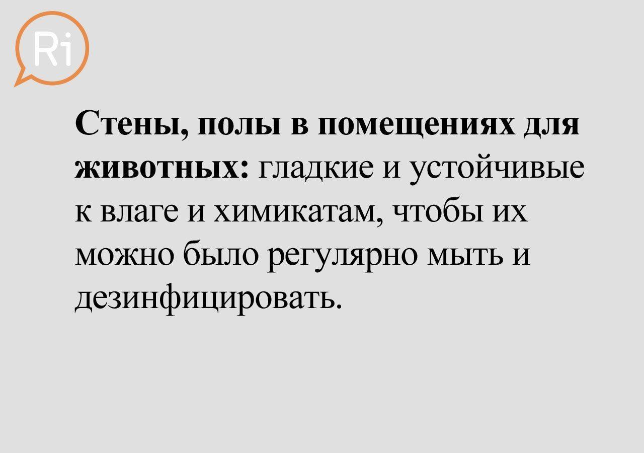 priut_slaid (5)