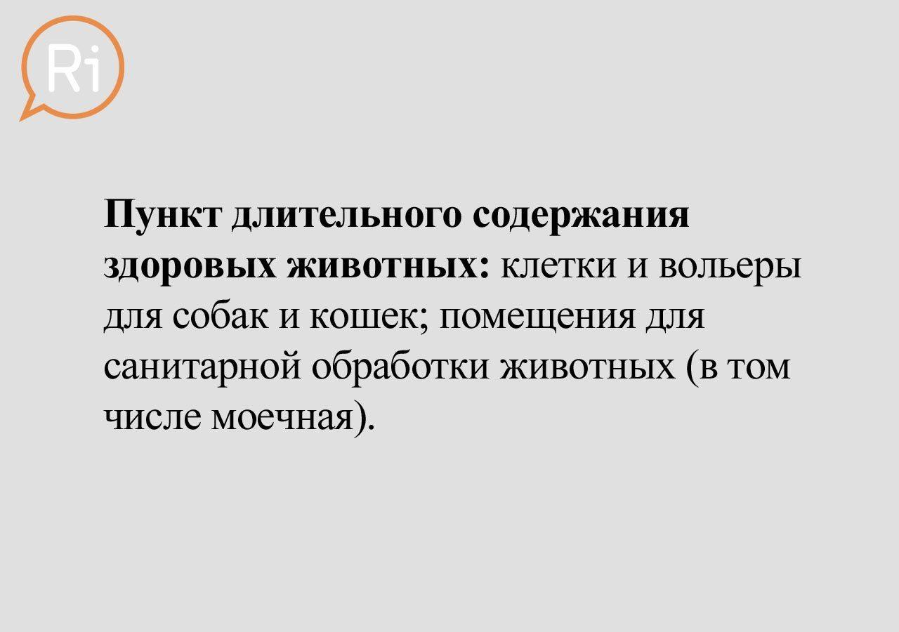 priut_slaid (8)