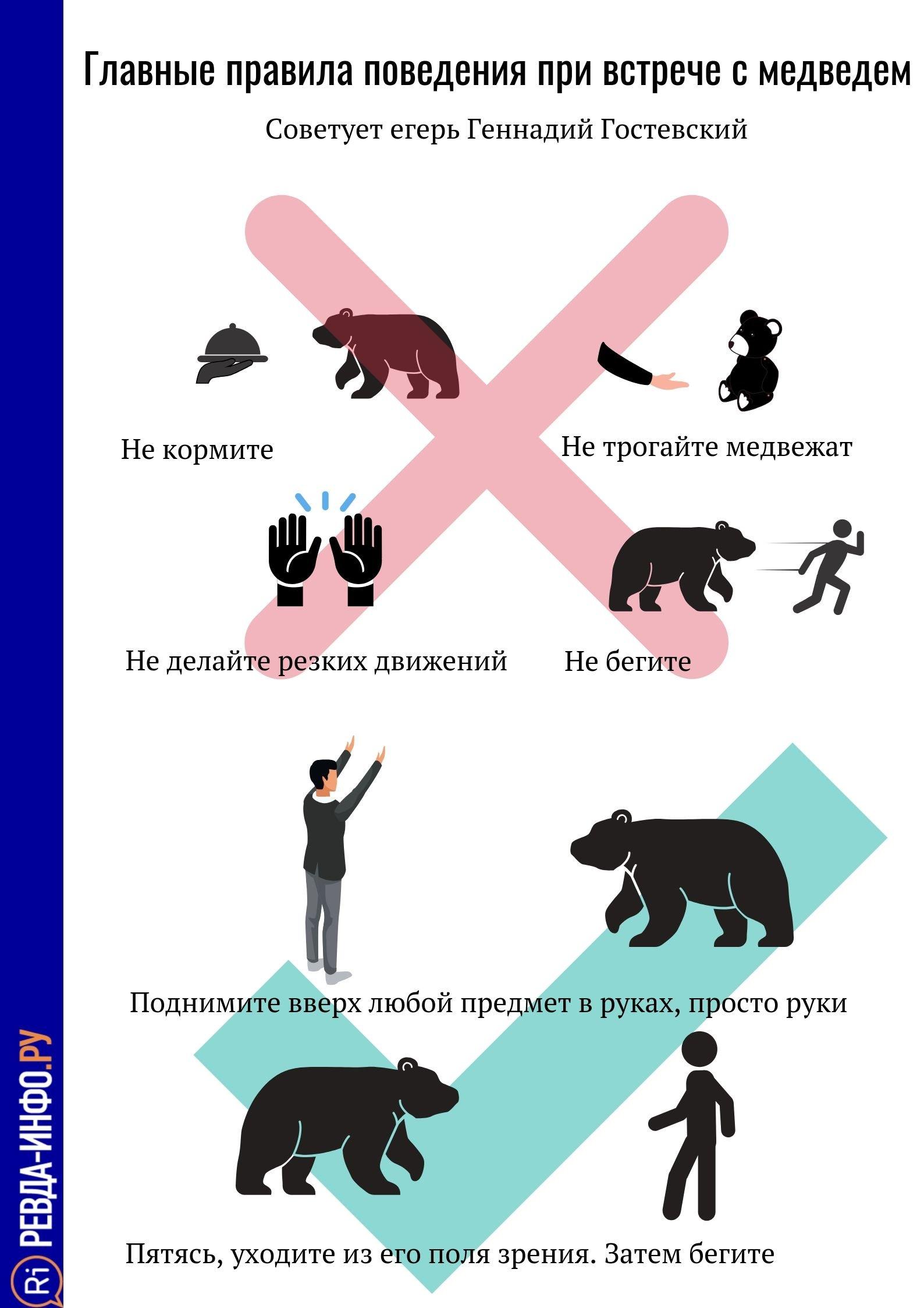 Glavnye-pravila-povedeniya-pri-vstreche-s-medvedem-1