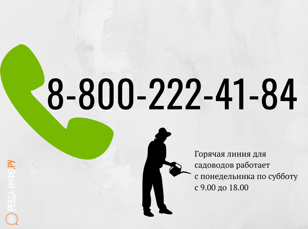 8-800-222-41-84