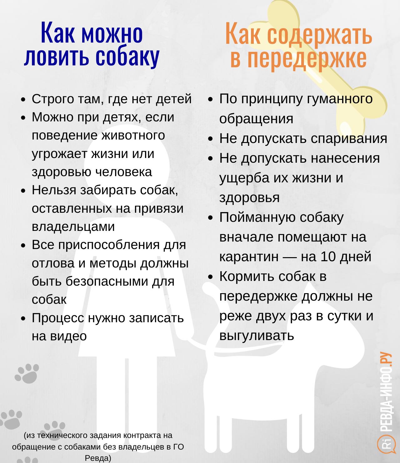 Bez-nazvaniya-kopiya-13