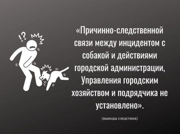 Prichinno-sledstvennoj-svyazi-mezhdu-intsidentom-s-sobakoj-i-dejstviyami-gorodskoj-administratsii-Upravleniya-gorodskim-hozyajstvom-i-podryadchika-ne-ustanovleno-