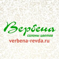 Verbena-1