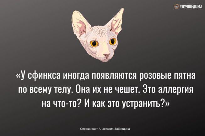 SHABLON-tsifra-bez-pikchi-kopiya-5